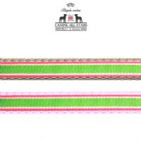 DOG LEAD - TROPICAL SUMMER STRIPES WATERMELON (RIBBON 10mm)